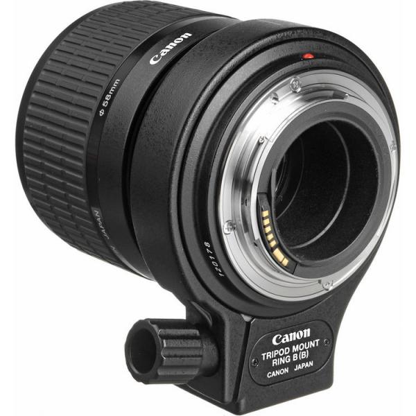 Canon MP-E 65mm f/2.8 1-5x Macro Photo (focus manual) 2