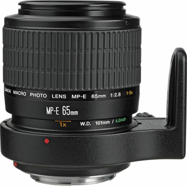 Canon MP-E 65mm f/2.8 1-5x Macro Photo (focus manual) 0