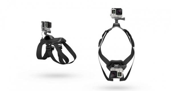 GoPro Fetch (Dog Harness) - ham pt montarea pe caini a camerelor GoPro 1