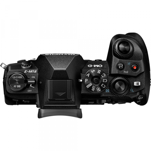 Olympus OM-D E-M1 Mark II +  M.ZUIKO DIGITAL ED 12-40mm f/2.8 PRO + M.Zuiko Digital ED 40-150mm f/2.8 PRO 3