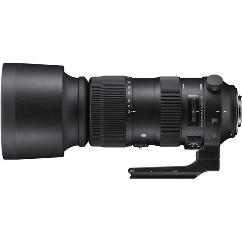 Sigma 60-600mm f/4.5-6.3 DG OS HSM Sport Nikon F 1