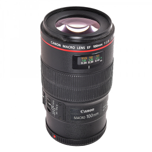 Canon EF 100mm f/2.8L Macro IS USM - (S.H.)2