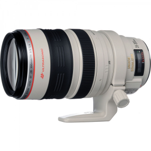 Canon EF 28-300mm f/3.5-5.6L IS USM1