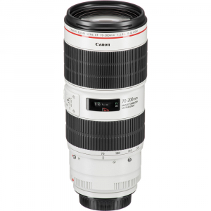 Canon EF 70-200mm f/2.8L IS III USM6