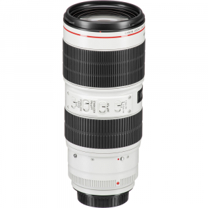 Canon EF 70-200mm f/2.8L IS III USM4