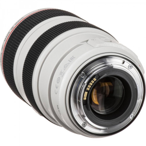 Canon EF 70-300mm f/4-5.6 L IS USM [4]