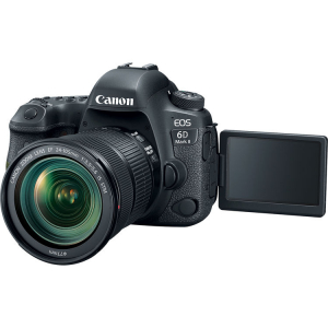 Canon EOS 6D Mark II + Canon EF 24-105mm f/3.5-5.6 IS STM4