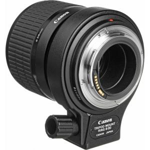Canon MP-E 65mm f/2.8 1-5x Macro Photo (focus manual)2