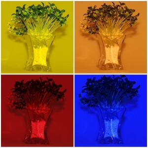 Godox CF-07 filtre (gel) coliorate 39x80mm pentru blitz cu patina [4]