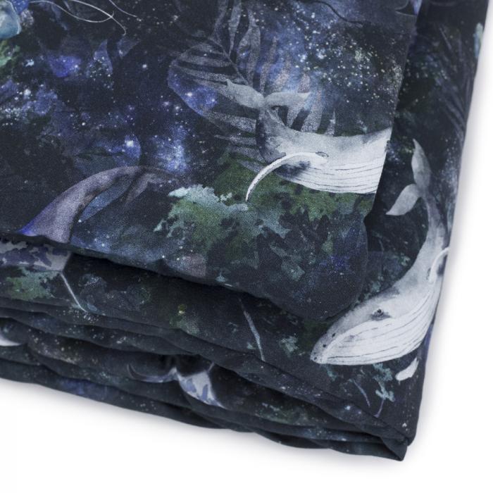 Set Paturica si Perna - Magic Forest MKZce41 [2]