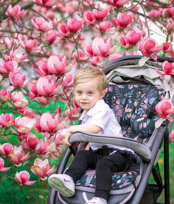 Husa Protectie Carucior 100% Bambus - Vintage Flowers MKZ4473 [1]