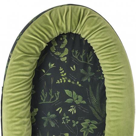 Baby Nest Herbarium MKZ00032 [1]