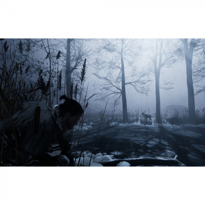 Joc Fade to Silence Steam Key Global PC (Cod Activare Instant) 4