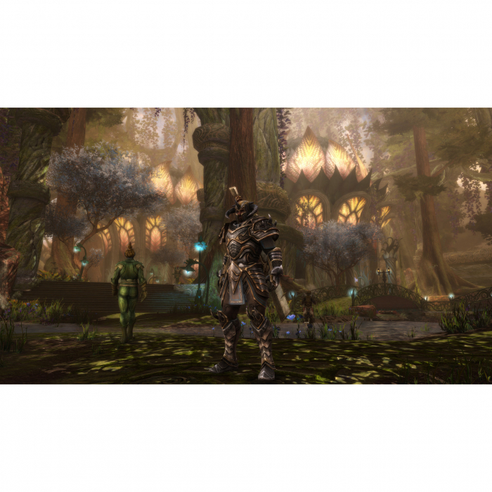 Joc Kingdoms of Amalur Re Reckoning pentru Xbox One 7
