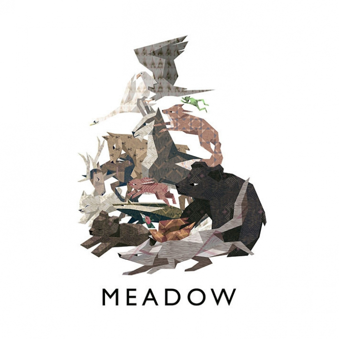 Joc Meadow Steam Key Global PC (Cod Activare Instant) 0