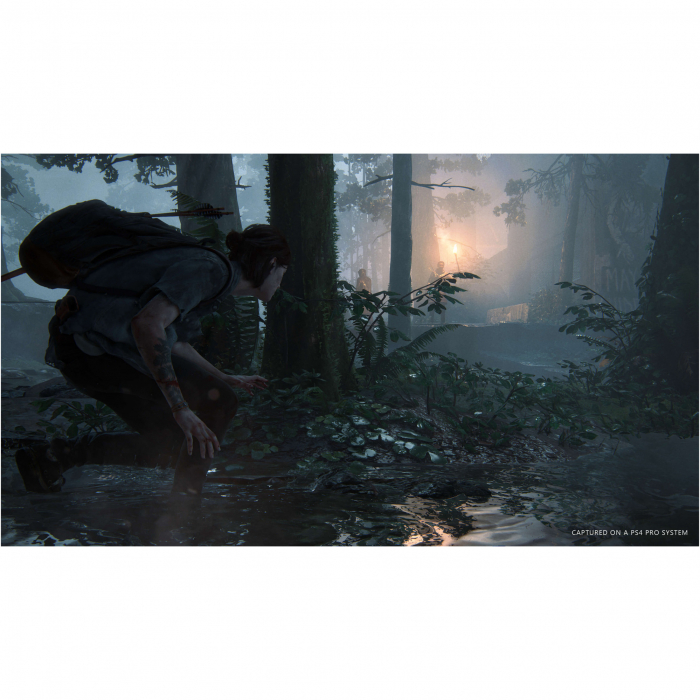 Joc The Last of Us Part II Collector's Edition pentru PlayStation 4 5