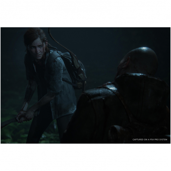 Joc The Last of Us Part II Collector's Edition pentru PlayStation 4 2