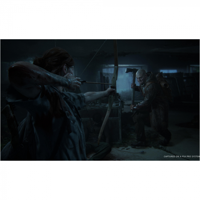Joc The Last of Us Part II Collector's Edition pentru PlayStation 4 4