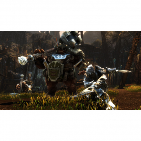 Joc Kingdoms of Amalur Re Reckoning pentru Xbox One4