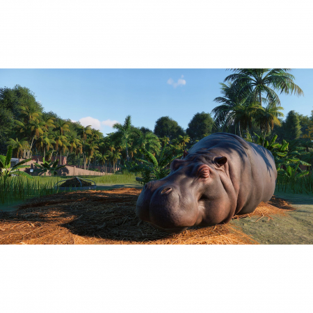 Joc Planet Zoo Deluxe Edition Steam Key Global PC (Cod Activare Instant)3
