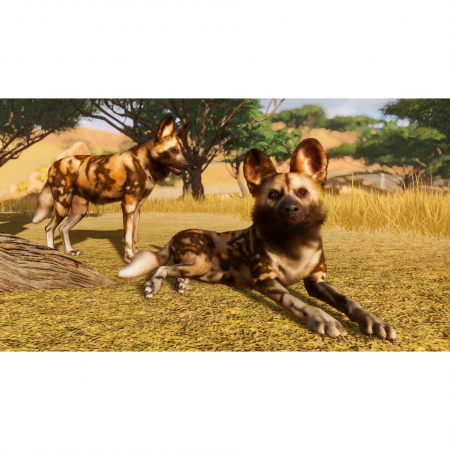 Joc Planet Zoo Deluxe Edition Steam Key Global PC (Cod Activare Instant)5