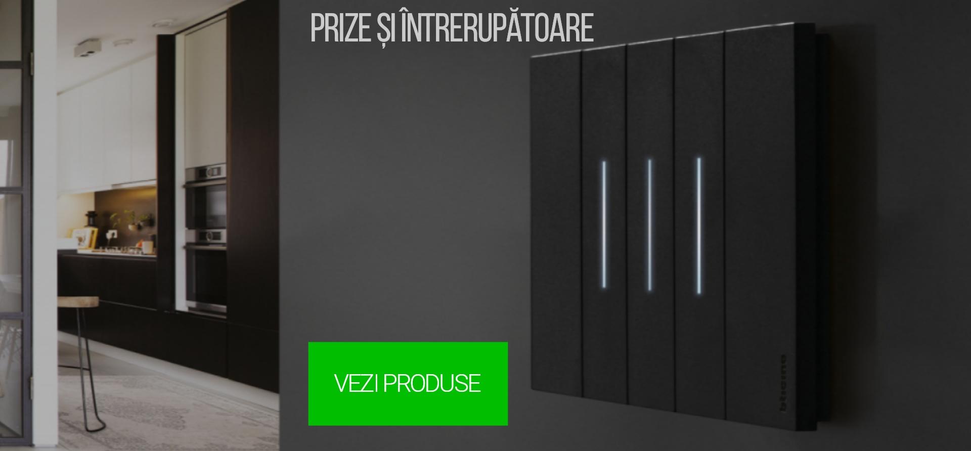 Prize si Intrerupatoare
