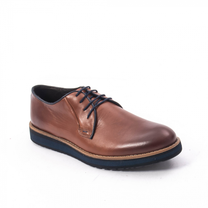 Pantofi casual barbati din piele naturala, Catali 505, coniac 0