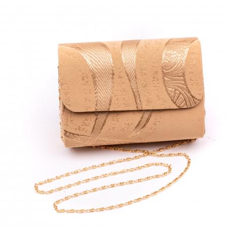 Plic  butoias 002 textil bej auriu1