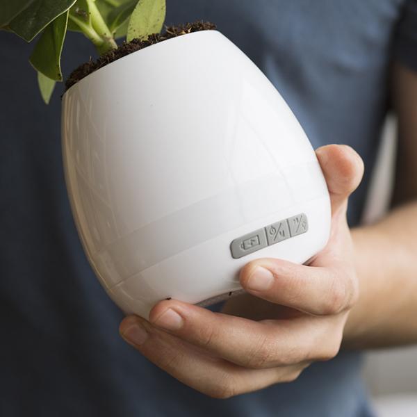 Ghiveci cu speaker incorporat 5