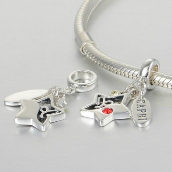 Pandantiv Capricorn argint 4