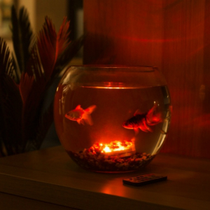 Dispozitiv Aqua Mood Light5