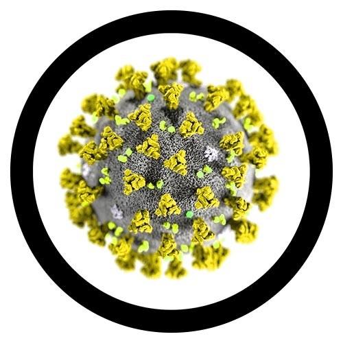 Breloc Coronavirus 2