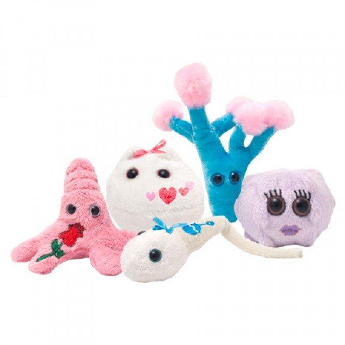 Cutie cu 5 mini-microbi varianta romantica 1