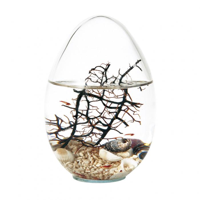 Din stoc: Beachworld Egg - Inaltime 13 cm [1]