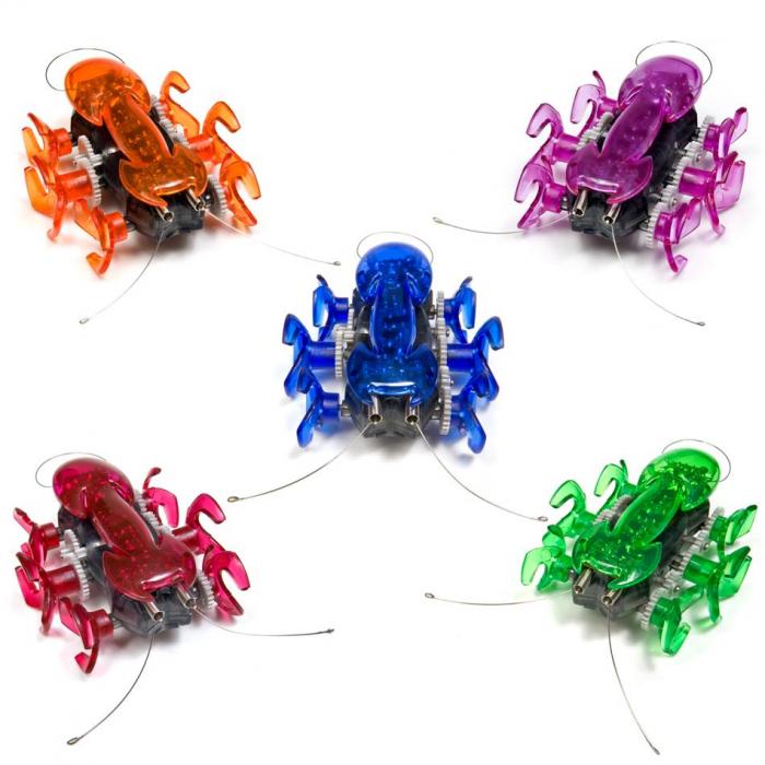 Hexbug Ant [1]