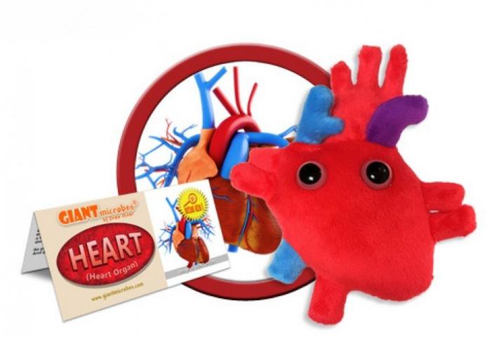 Inima 1