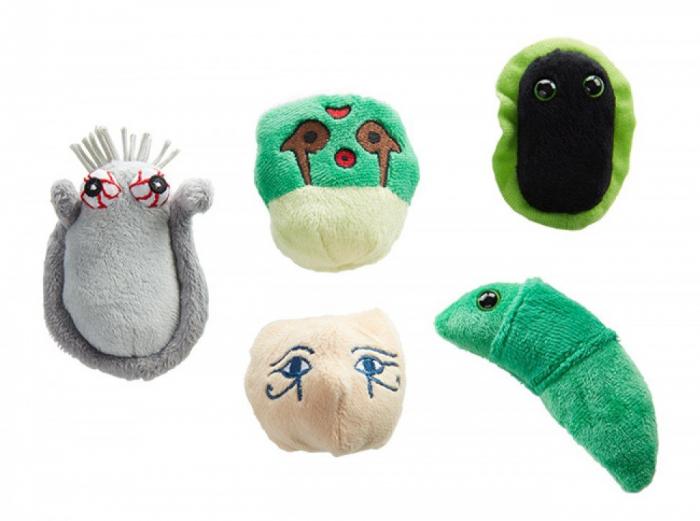 Pachet cu 5 mini-microbi varianta Vacanta exotica [1]