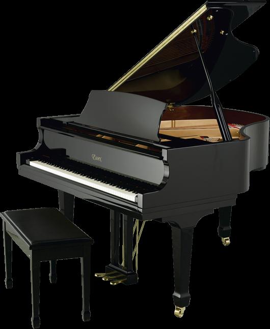 Pianul cu coada [1]