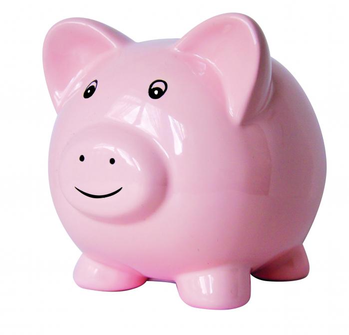 Pusculita Piggy 0