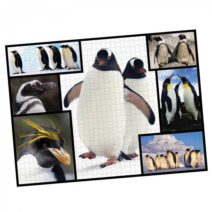 Puzzle WWF 1000 piese - Pinguini 1