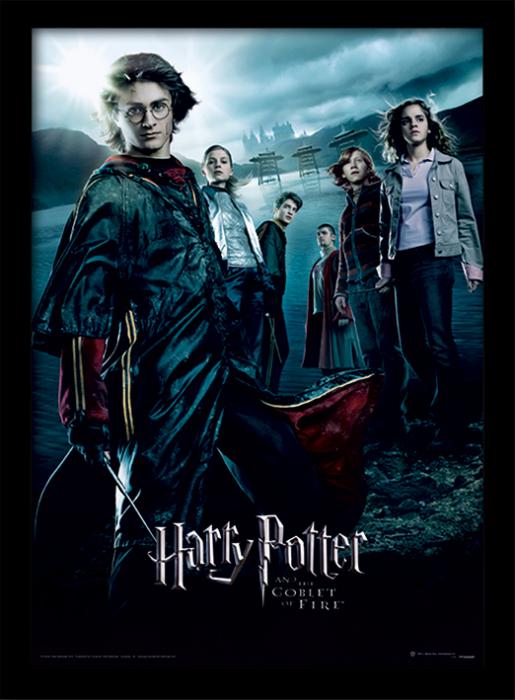 Tablou Harry Potter - Pocalul de Foc [0]