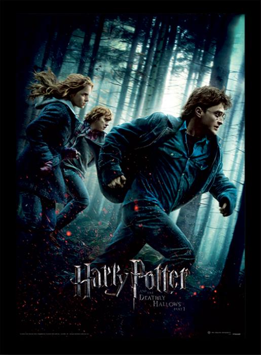 Tablou Harry Potter - Talismanele Mortii [0]