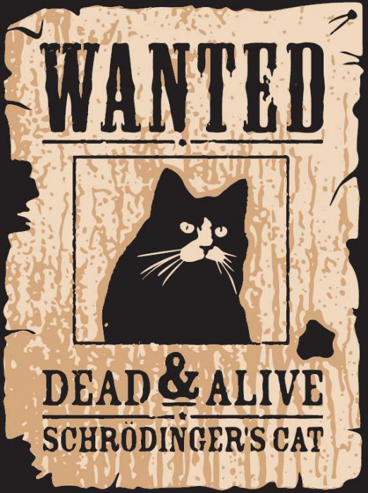 Tricou Pisica lui Schrodinger [0]