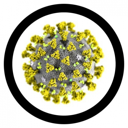 Breloc Coronavirus2