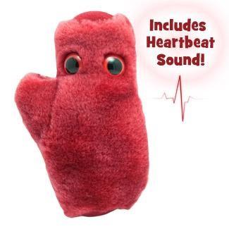 Celula Cardiaca1