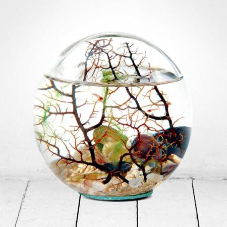 Din stoc: Beachworld Sferic - Diametru 15 cm0