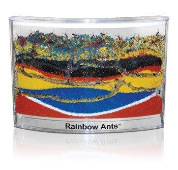 Habitat pentru furnici cu nisip colorat0