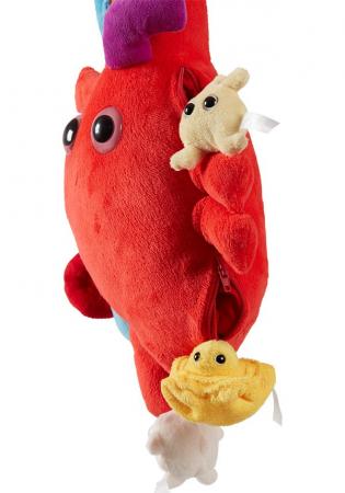 Inima XL cu mini-celule [1]