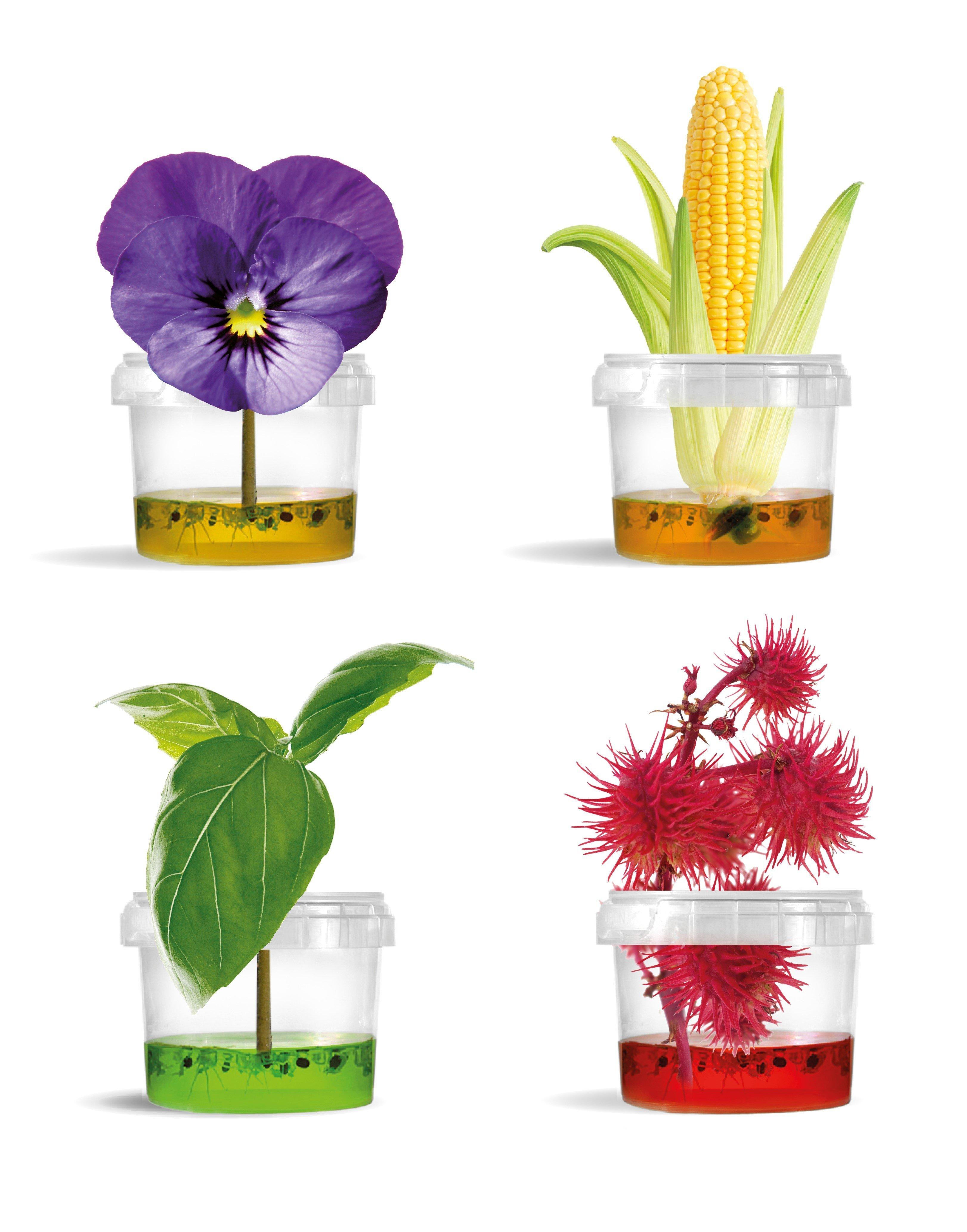 Plantarium Gardener0