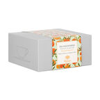 Ceasca cu farfurie din portelan, Mango& Bergamot, Tea Discoveries, Whittard of Chelsea1